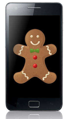 Galaxy SII Gingerbread