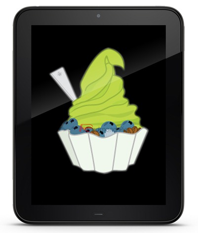 TouchPad Froyo