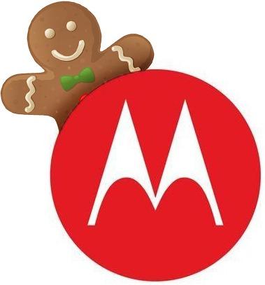 Moto Gingerbread