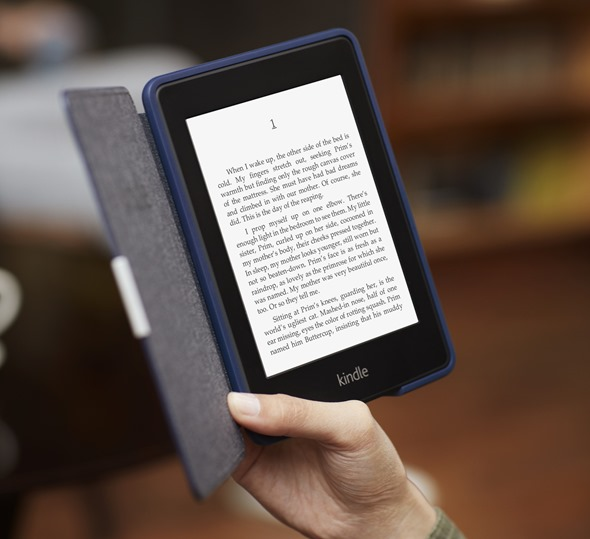 Kindle Paperwhite, In Cover