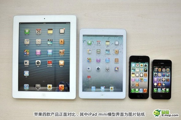 iPad-Mini-Dummy-019