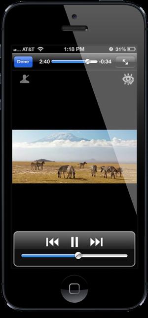 LA Player iPhone 3