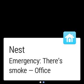 1 - nest