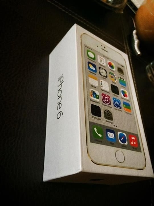 iPhone 6 box 2