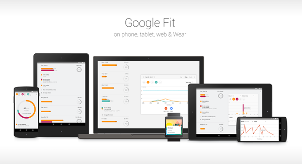 Google Fit main