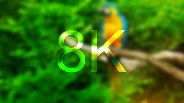 8K main