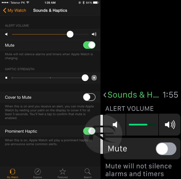 Alert Volume