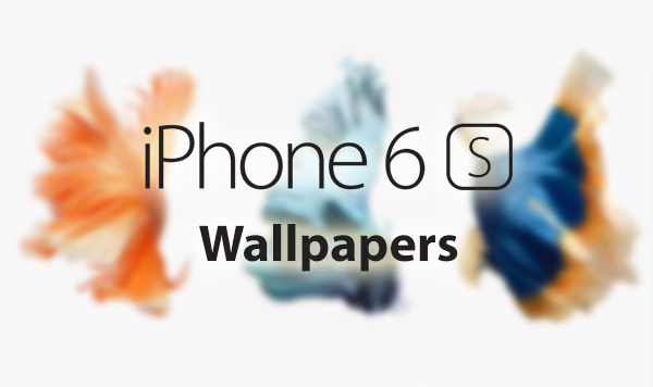 Download IPhone 6s Live Wallpapers As Still Images For Use