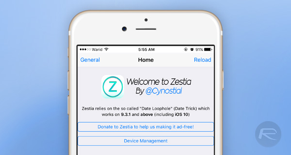 Zestia-Cydia-alternative