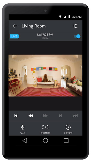 nest-app-cam-video-dog-US