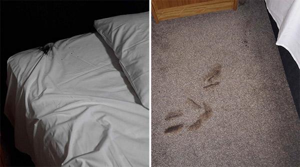Hotel-room-damage