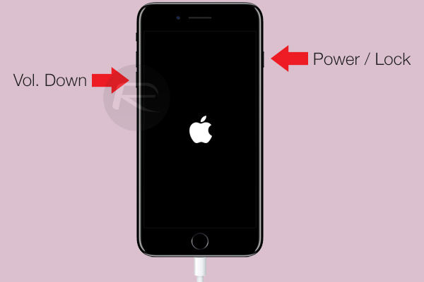 How To Put A Iphone  In Recovery Mode