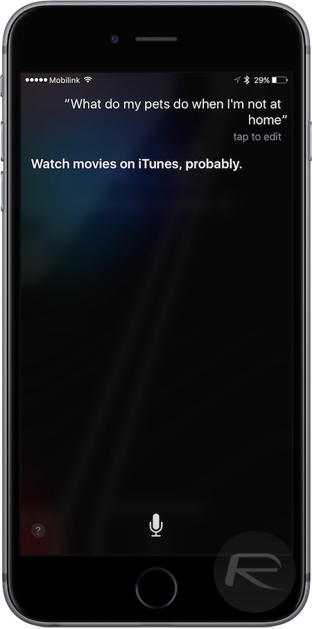 Siri pets movie