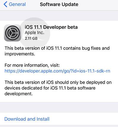 ios 11 beta ota download