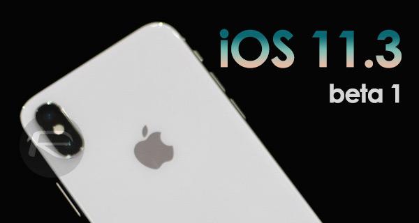 SCARICARE IOS 11.3 BETA