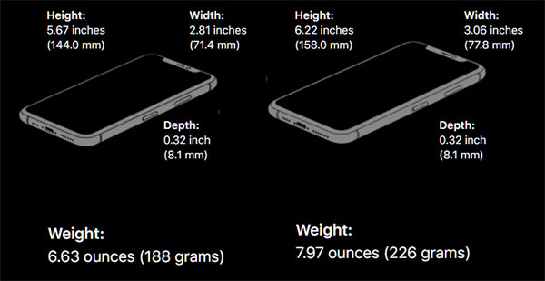6 things you didn't know about iPhone 11, 11 Pro and 11 Pro Max - AnimalsForest.com